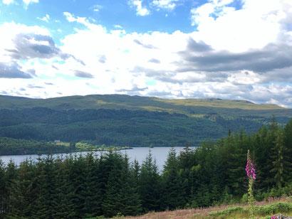Schottland_LochNess