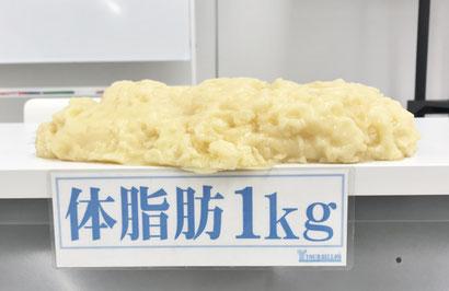 モリマサエステスクール痩身理論、体脂肪1kg