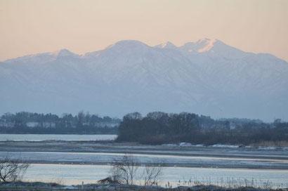 1月24日の阿賀野川の様子