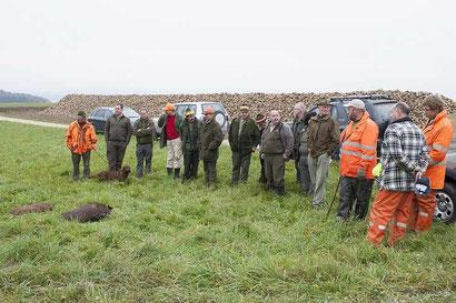 Die Strecke wird gelegt...... Die beiden Wildschweine, ein Frischling mit 30 Kg und ein Ueberläufer mit 50 Kg.