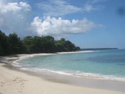 Insel  Cayos Zapatillas