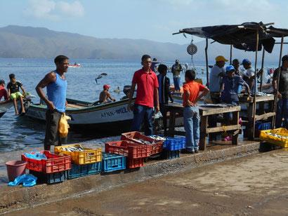 jeder Fischer wollte uns seine Fische verkaufen