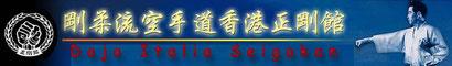 Collegamento al sito dell' Hombu Dojo Seigokan Goju Ryu Karate do e ad altri siti Seigokan sparsi per il mondo