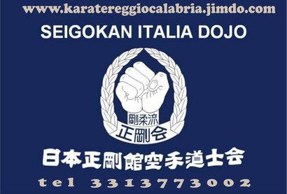 REGGIO CALABRIA. Tutto pronto per il 19° corso di difesa personale dell'Accademia Seigokan Goju Ryu