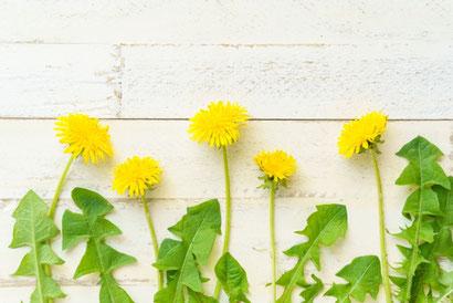 白いバラのブーケとコーヒーの入った白のマグカップ。