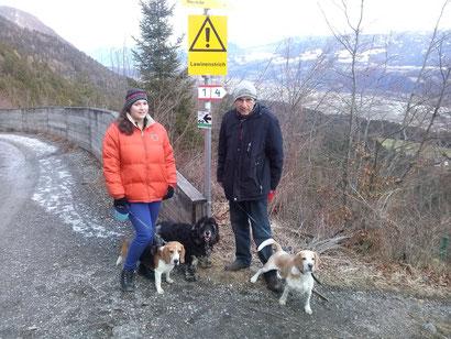 Shorty Richtung Enzianhütte mit seinen SitterInnen Viola und Kázmér und seinen Freunden Molly und Charly