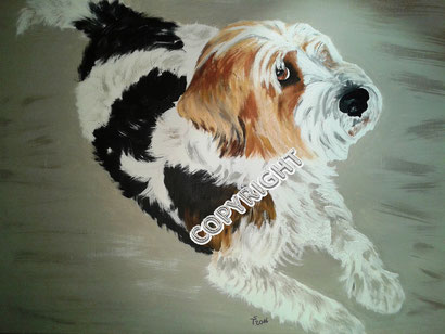 Hundeporträt, Acryl auf Leinwand, 50x70 cm