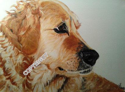 Golden Retriever: Kopfporträt des Hundes in Seitenansicht. Der Hund schaut nach rechts; sichtbar sind rechtes Ohr, Auge und Nase. Das Fell des gemalten Hundes ist blond, Tiermalerei, gemalte Tierportraits nach Fotovorlage, Tiere zeichnen lassen