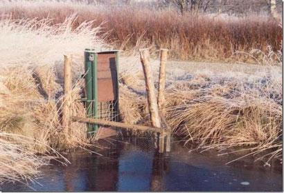 """In den 1980er Jahren erfolgte der Einbau sog. """"Mönche"""" zur kontrollierten Wasserstandsanhaebung im Dosenmoor, hier am Hauptweg. Foto: UNB Neumünster."""