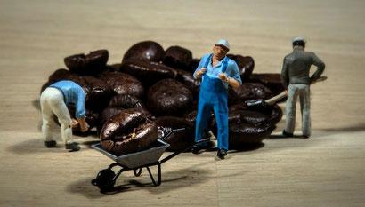 コーヒー豆を運ぶおじさん