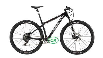 XC electrique bike