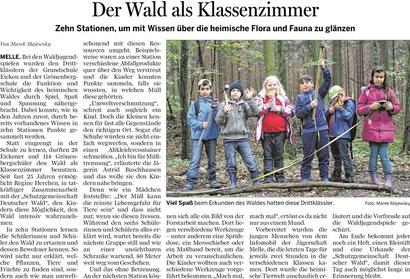 Waldjugendspiele 2013