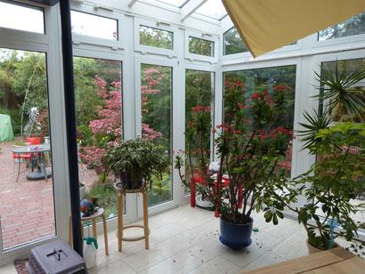 Zwischen Wohnung und Garten - ein wunderbarer Arbeitsplatz