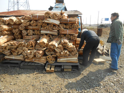 武州熊谷ひみこ窯 薪の調達風景