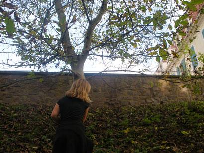 Eroberung über die Schlossmauer...