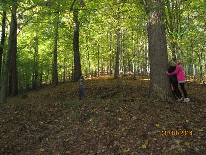 Im Wald kann man auch super verstecken Spielen!