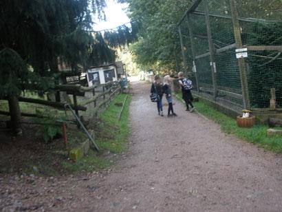 """Im Tierpark """"Siebeneichen"""""""