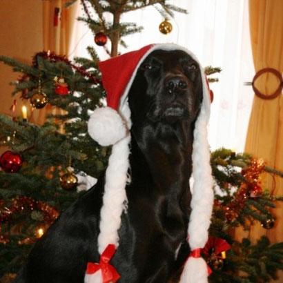 Rieke Weihnachten 2009
