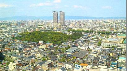 堺市北区の街並みです★
