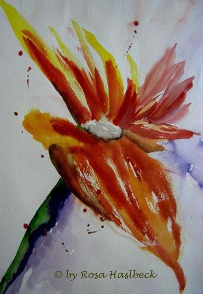 aquarell kaufen, kunst kaufen, bild kaufen, blumenaquarell, strelizie, blume, kunst, bild, malen,
