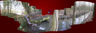 Débordement du grand canal dans le grand parc - Enghien