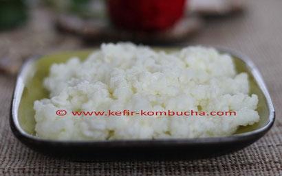 grains de kefir de lait recettes