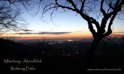Fulda leuchtet in der Ferne