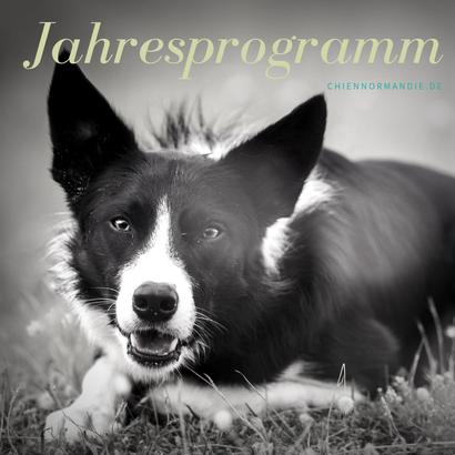 Jahresprogramm chienNormandie Urlaub mit Hund