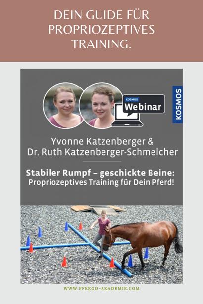 Ergotherapie für Pferde: Propriozeptives Training für mein Pferd.