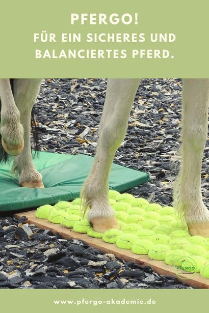 Ergotherapie für Pferde: Mit dem PFERGO-Kurs kannst Du Dein Pferd sinnvoll trainieren - und bekommst die Bauanleitung für unser Tennisballbrett!
