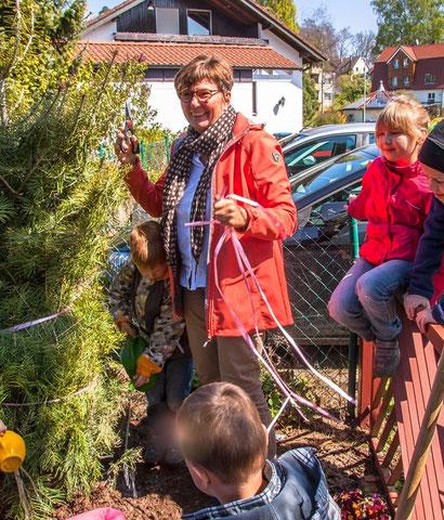 Cornelia Schall und die Kinder heißen die Colorado-Tanne willkommen!