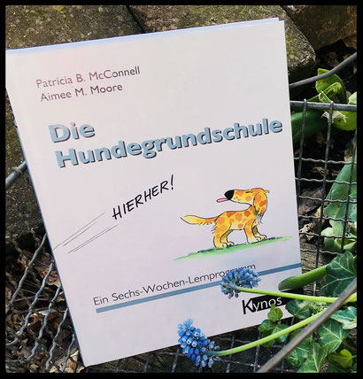 Die Hundegrundschule Patricia McConell