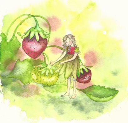 Erdebeerelfe, Erdbeerfee