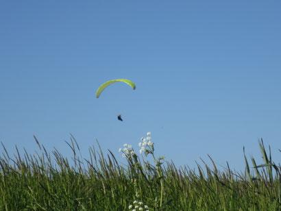 Parapente avec l'Icarus Club ardennais à Douzy