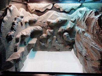 Terrarium Styroporrückwand + Fliesenkleber + Farbe + Lack