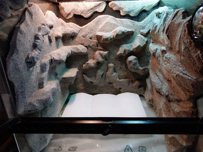 Terrarium Styroporrückwand + Fliesenkleber + Farbe