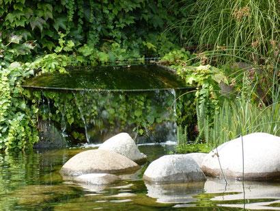 Am wunderbar wunderschönen Teich