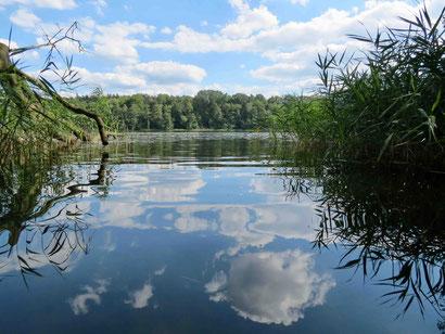 Drewensee Baden Schwimmen