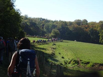 Randonnée sur la Via Francigena dans l'Aisne