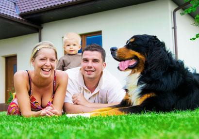 Hundehaftpflichtversicherung Test, Vergleich