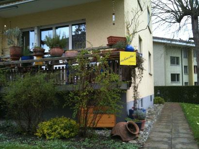 Ernährungs-Psychologische Beratung und Life Coaching in Zürich