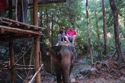 Elefantentour in den Urwald Thomas... du schaffst das