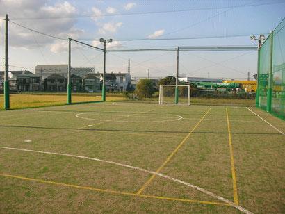 habilidoso futsal park