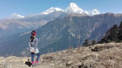 Beste Reisezeit für Nepal, Aussicht Fishtail