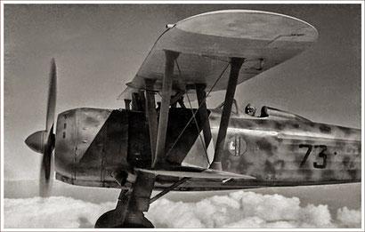 """Una rarissima immagine di Ernesto Botto ai comandi del suo Cr.42 """"Falco"""" Immagine di www.finn.it"""