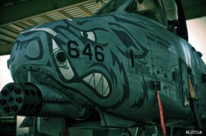 Il muso di un A-10 con le 7 canne del GAU-8