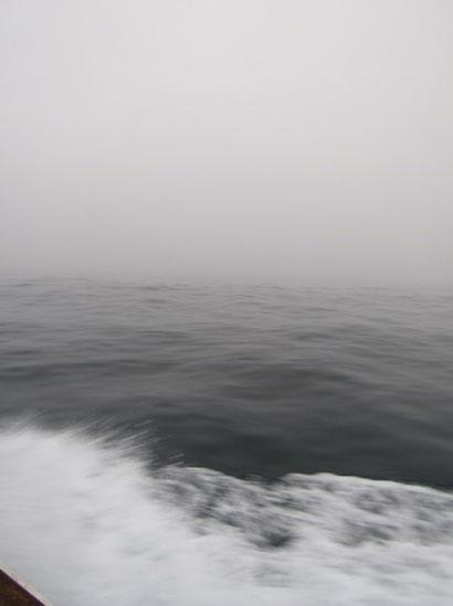 小雨交じりの濃霧