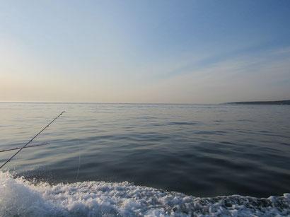 絶好の釣日和