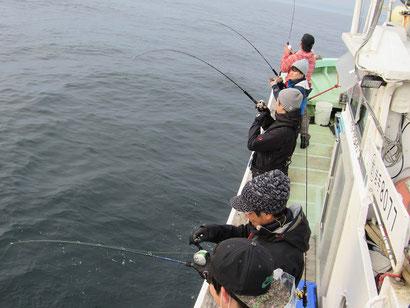 片舷に並んで釣ました