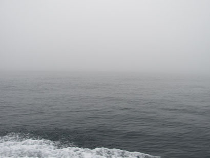 濃い霧に包まれました